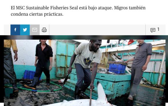 Migros critica la tortura de tiburón / Migros kritisiert Hai-Quälerei