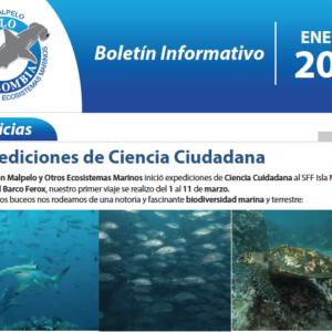 1er Boletín Informativo / Newsletter / 2019