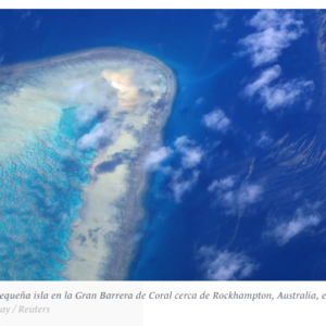 Why the U.N. Pact on High Seas Biodiversity Is Too Important to Fail