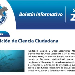 3er Boletín Informativo / Newsletter / Bulletin d'Information / 2019