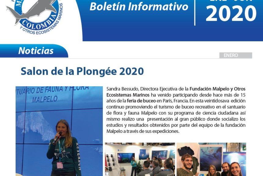 Boletín Primer Semestre 2020- Fundación Malpelo y Otros Ecosistemas Marinos