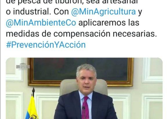 ¡Colombia prohíbe la pesca de tiburón!